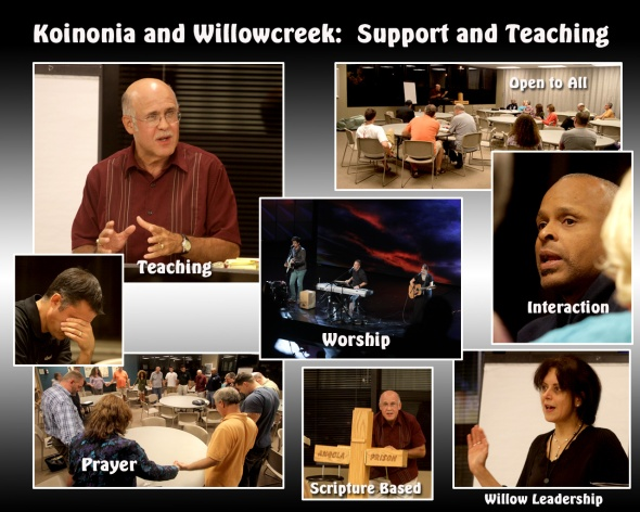 Willow support and teaching